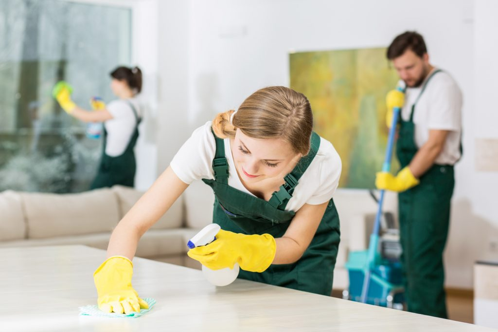 Three hardworking people as professional cleaners & housekeepers